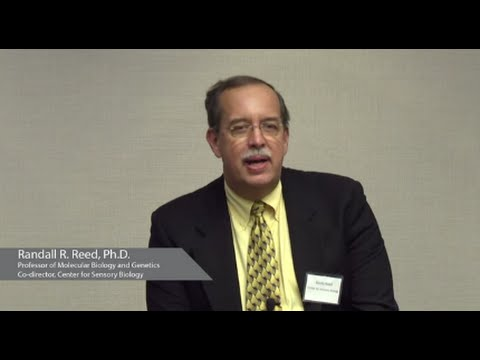 Sensory Systems and Smell   Randall R. Reed, Ph.D - YouTube